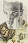 RL 19102 r 2011, matita su carta, acetato, stampa su carta, nastro adesivo, cm 54x35